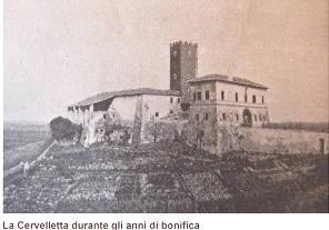 cervelletta_antica2